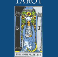 Tarot Card Readers 17