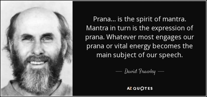 What Is Prana