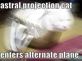 is magic real - cat astral projection