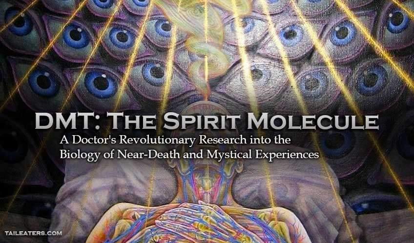 third eye chakra dmt spirit molecule