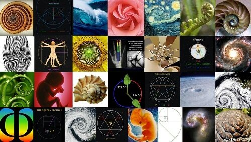 sacred geometry symbols nature