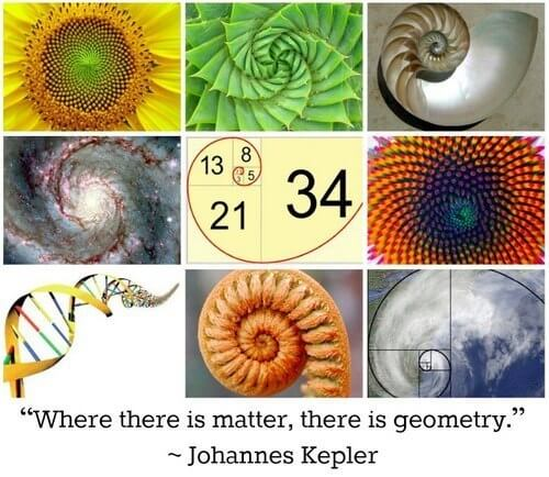 sacred geometry symbols golden ratio nature