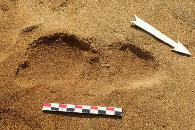 ancient giants neanderthal footprint larger than humans