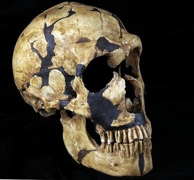 The Ancient Race Of Hominid Giants 22