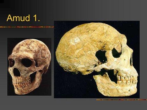 ancient giants amud 1